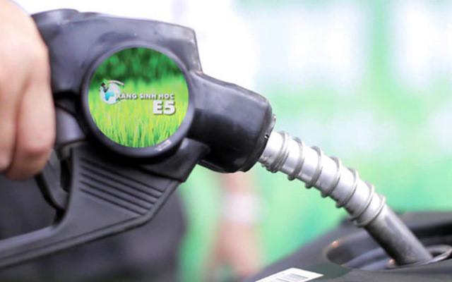 Hiểu về xăng sinh học và các loại nhiên liệu đốt 1